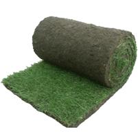 Leveren en plaatsen van grasmatten en graszoden in Evergem